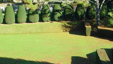 slide_giardinaggio-440×250